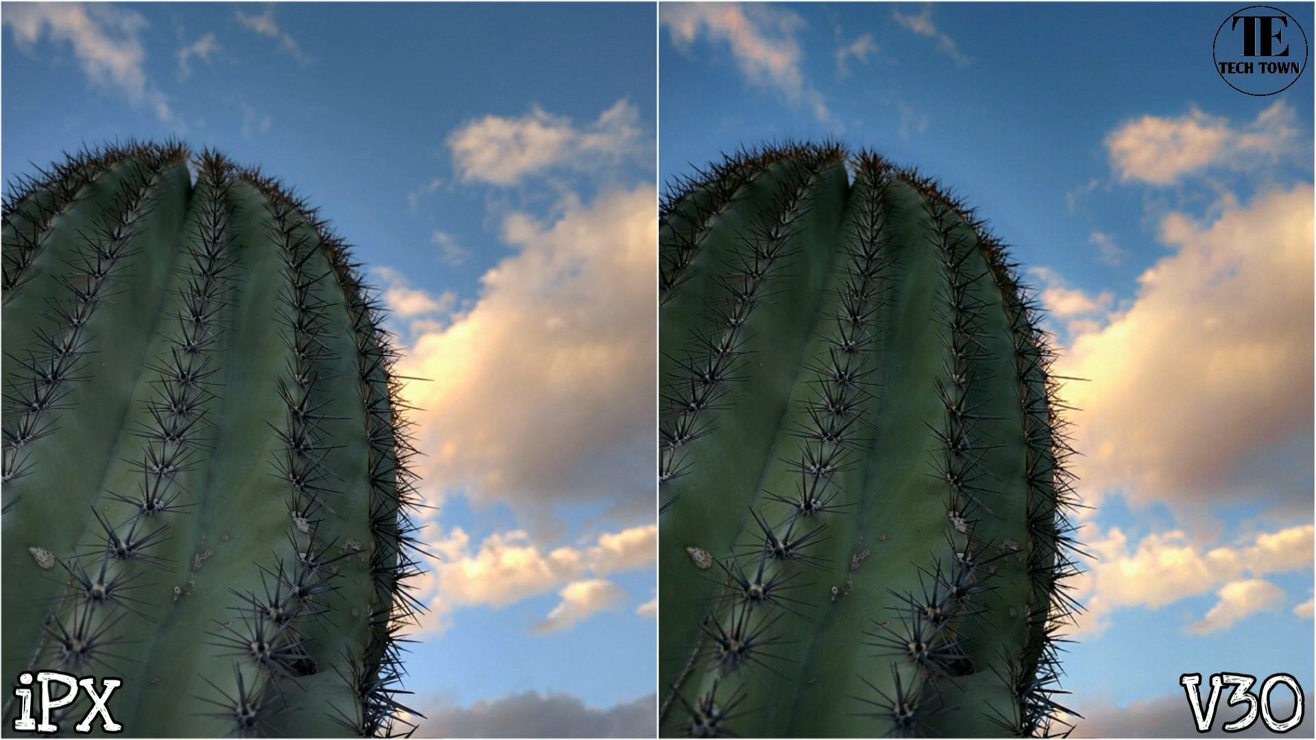 Сравнение камер iPhone X и LG V30