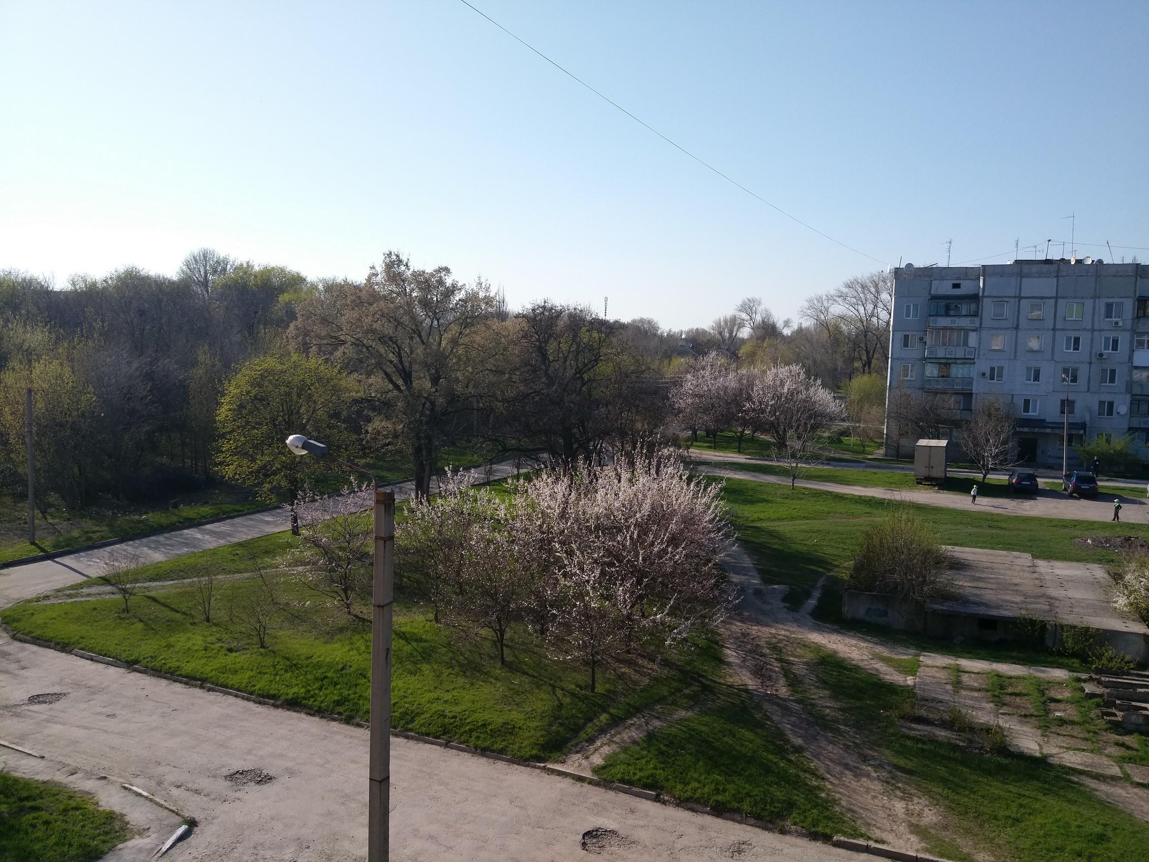 Пример фото HTC 10 Evo