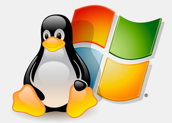 Linux или Windows Хостинг
